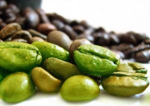 zielona kawa tabletki działnie i efekty